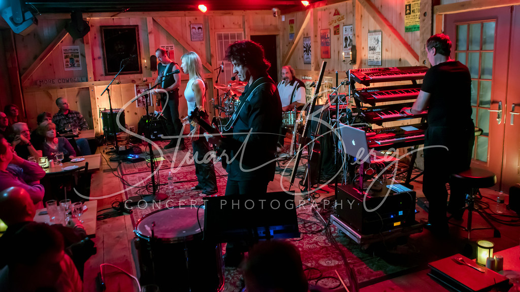 Security Project   <br /> November 3, 2016  <br /> Daryl's House Club, Pawling, NY <br /> ©StuartBerg 2016