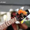 Flower in Jack Blades Bass