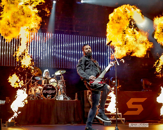 Skillet in VA 12-31-18 by Annette Holloway Photog