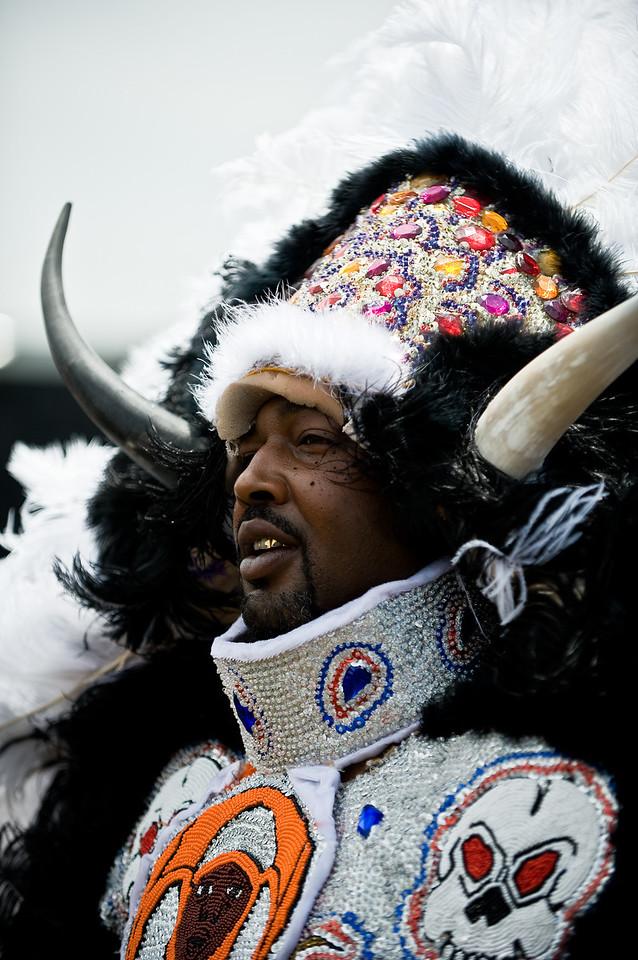 mardi gras Indian Bull