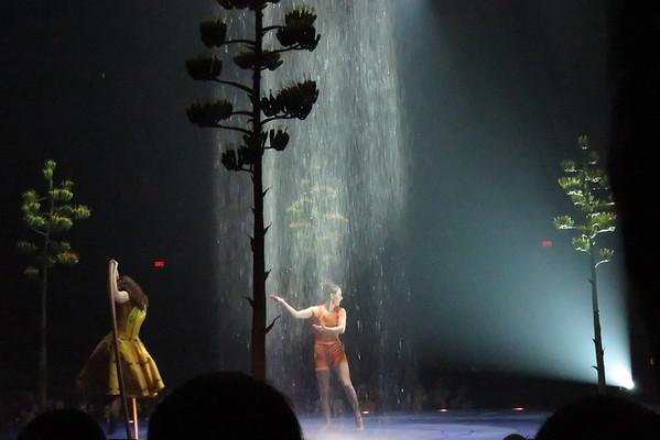 Cirque du soleil Luzia 21-05-16 (13)