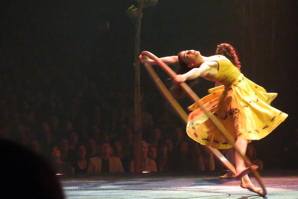 Cirque du soleil Luzia 21-05-16 (11)