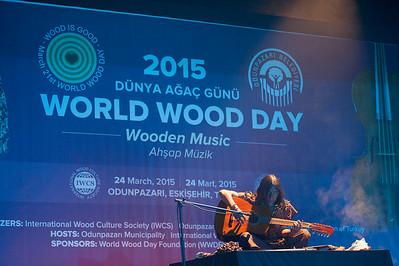音樂會,木音樂