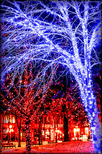 trees and lights merged
