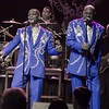 The Spinners 180223 (The Rose)
