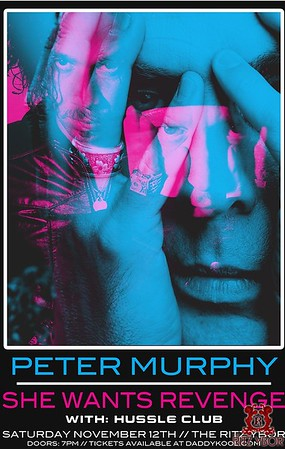 She Wants Revenge / Peter Murphy November 12, 2011