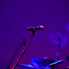 Several Species -  The Pink Floyd Experience, at Tally Ho Theater, Leesburg Virginia, 10/05/2019
