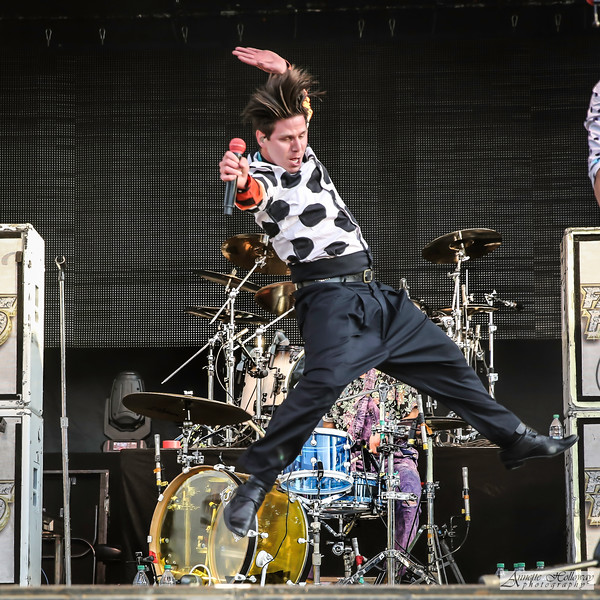 Family Force 5 - Crouton © Annette Holloway