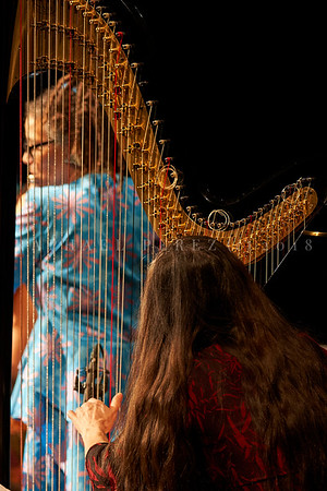 Nicole Mitchell and Black Earth ensemble, Sons d'Hiver Festival 2019 Nicole Mitchell through the harp of Helene Breschand