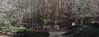 Alpharetta Home For Sale In Concord Hall (175)