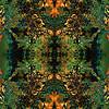 Green-Gold Cosmos : Symmetry Series #13