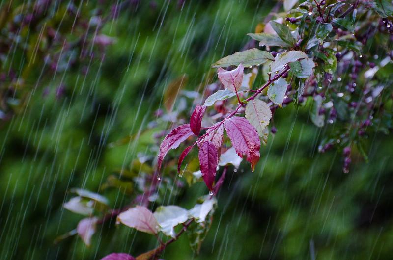 yves-parslow-eau-450 438-9216