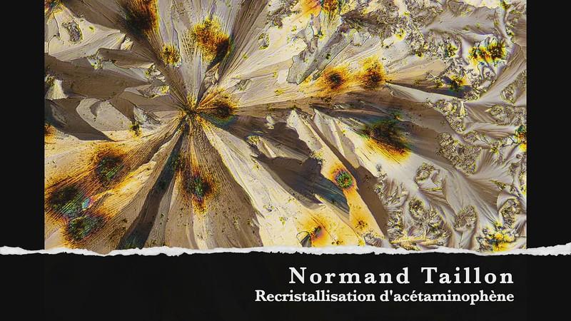 normand taillon recristillasation acetamoniphene