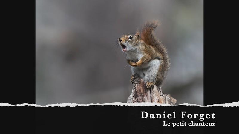 Daniel Forget Le petit chanteur