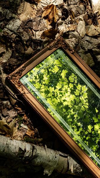 Bertomeu_Joel_Le miroir ancien_exposition_2021
