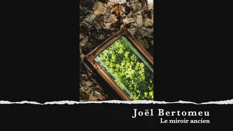 Joel Bertomeau le miroir ancien