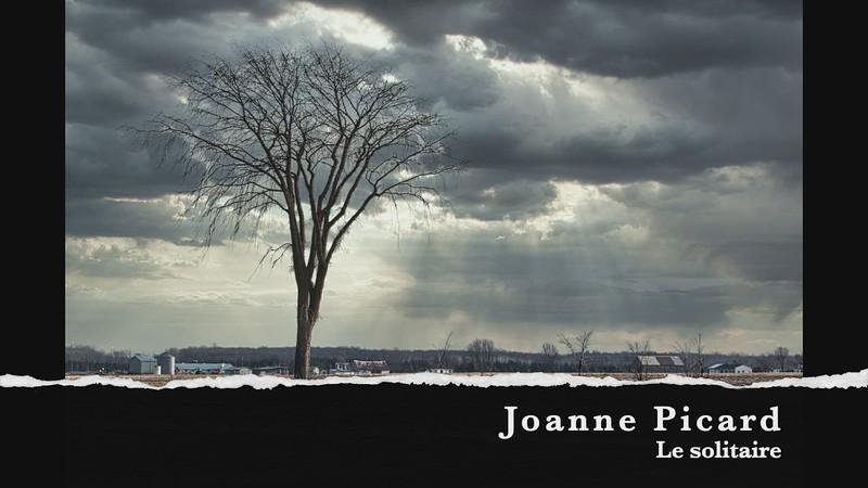 Joanne pîcard le solitaire
