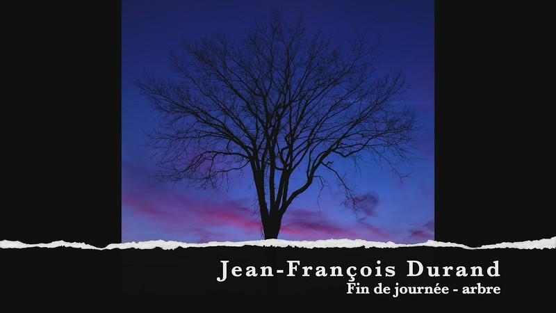 JF durand fin de journée arbre