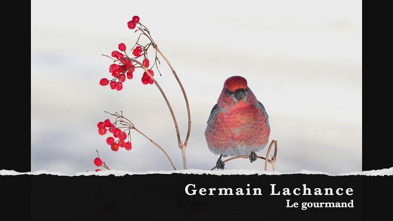 Germain Lchance Le gourmand