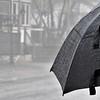 Prix d'Excellence - Sous la pluie