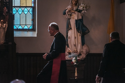 _NIK8888Brown Confirmations Bishop Fellay