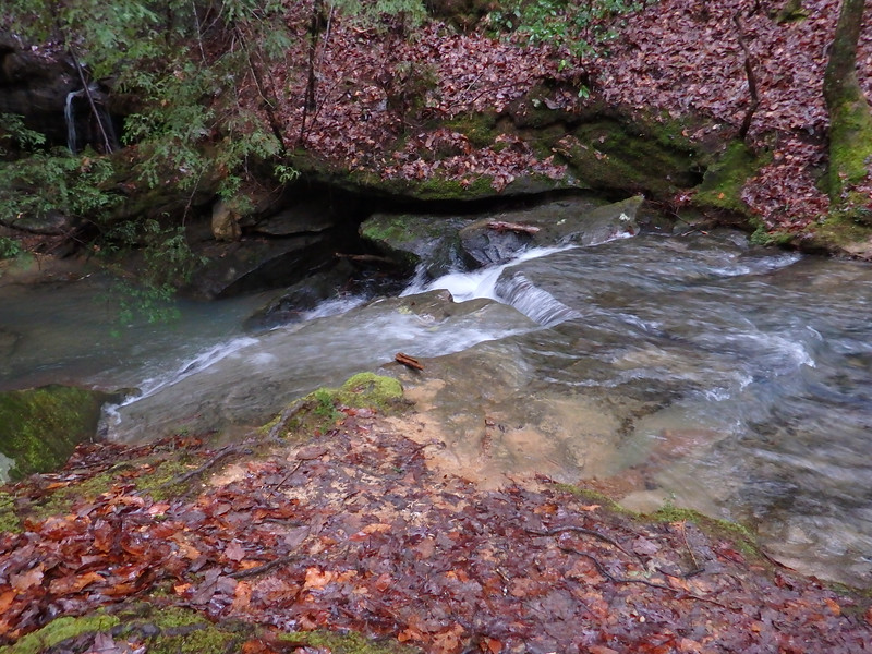 Alabama Natural Bridge Park