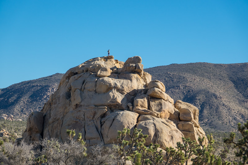 Solo Man Standing on Top of Granite Rock Outcrop at Joshua Tree National Park