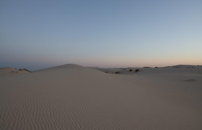Morning Sand Dunes