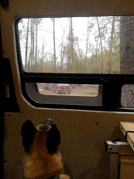 Mica Looking for Cajun Squirrels