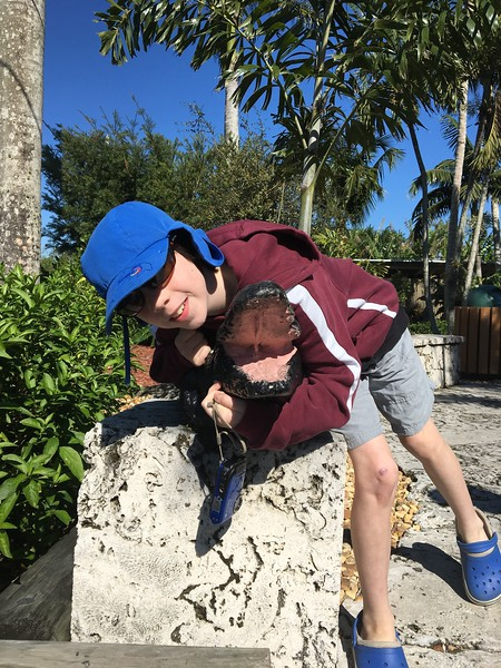 Nephew Posing with Fake Gator at the Alligator Farm