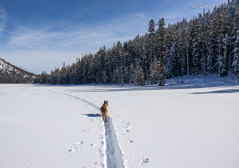 Winter Adventure at Grass Lake in the Sierra Nevada