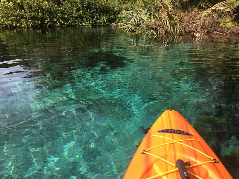 Kayaking in Rainbow River Springs