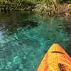 Kayaking in Rainbow River Springs