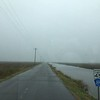 Roads Through the Estuary Wetlands