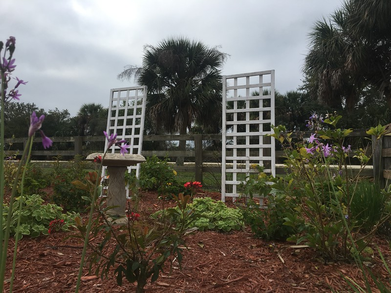 Small Garden at Trail Head in Myakka State Forest