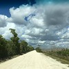 Loop Road in Big Cypress National Preserve