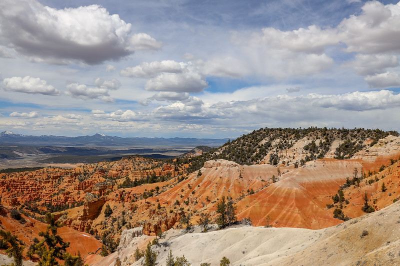 Valley of White and Red Rock Sandstone Along the Thunder Mountain Trail in Utah