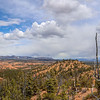 Panorama of Forest and Red Rock Landscape with Storm Clouds on Thunder Mountain Trail in Utah