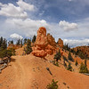 Ridgeline Trail Passing by Red Rock Sandstone Formations on the Thunder Mountain Trail in Utah