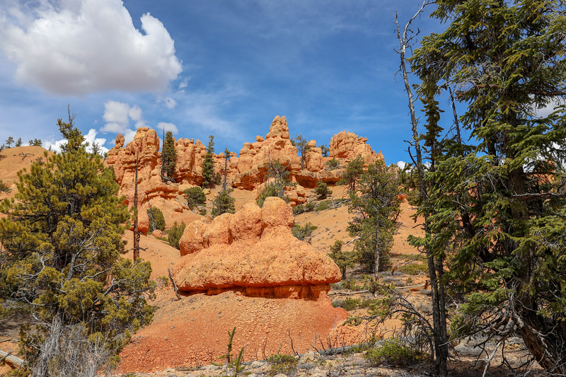 Red Rock Hoodoo on Along Thunder Mountain Trail in Utah