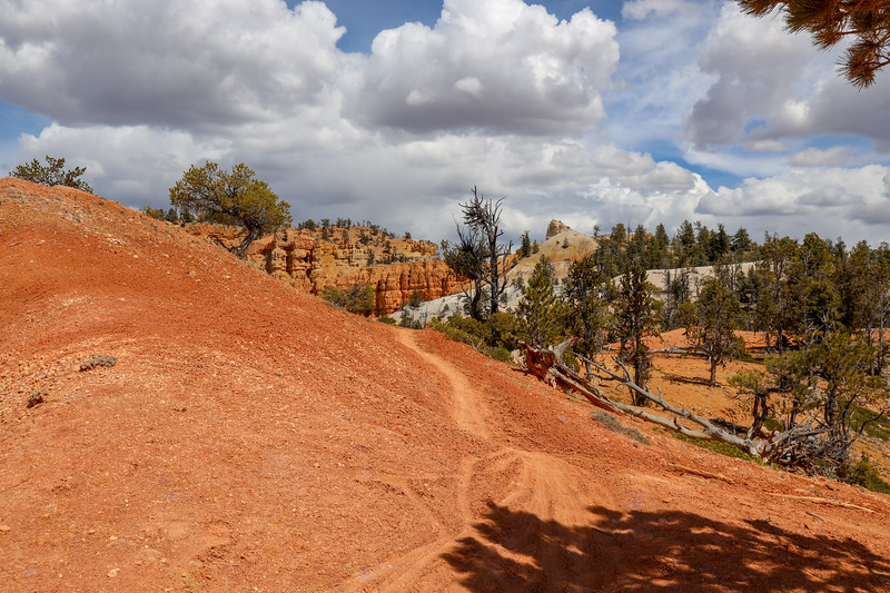 Narrow Trail Across Red Dirt to Viewpoint on the Thunder Mountain Trail in Utah