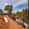Snow Along Trail on the Thunder Mountain Trail in Utah