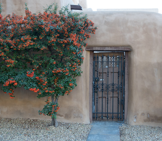 Doorway and Flowers Along Adobe Wall