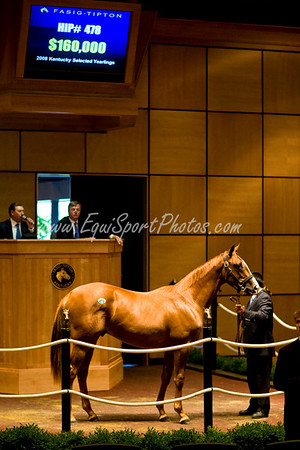 Hip478-ProudCitizen-Cassidy_esp