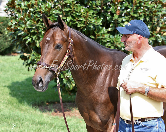 Hip 368, Speightstown - Love At Noon (c. 2/3/2006) with Greg Burchell