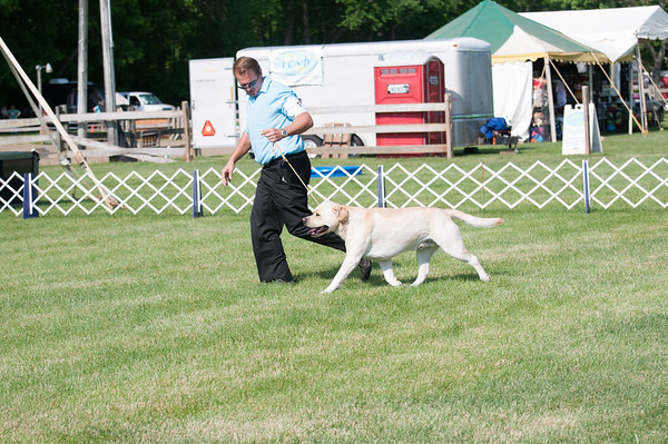 Plainfield Kennel Club Show - Freehold, NJ