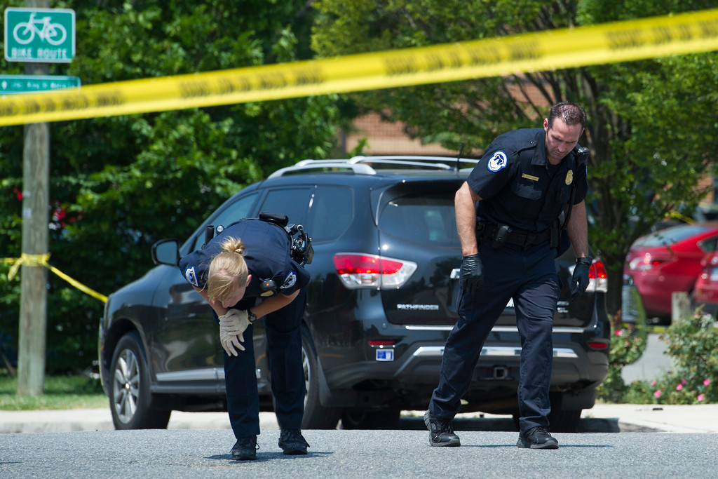 . Crime scene investigators search for evidence at the sight of a multiple shooting in Alexandria, Va., Wednesday, June 14, 2017, involving  House Majority Whip Steve Scalise of La., and others, during a congressional baseball practice. (AP Photo/Cliff Owen)