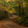 Gravel road in Autumn