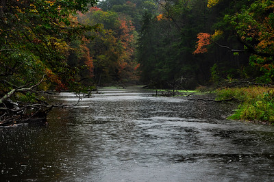 Coginchaug River in Fall