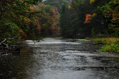 Coginchaug River in Fall